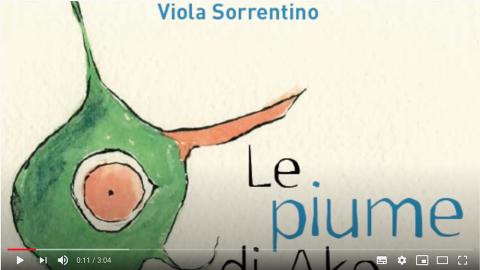 Video libro Le piume di Ako